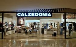 Digital Signage для группы компаний Calzedonia, Tezenis, Intimissimi