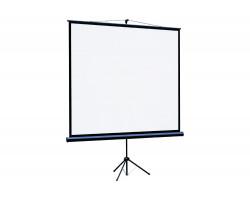 [LEV-100104] Экран на штативе Lumien Eco View 127x127см (раб.область 121х121 см) Matte White