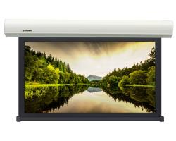 [LMBC-100109] Экран с электроприводом Lumien Master Business Control 261х394 см, (раб.область 240х384 см) (178