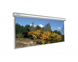 [10130233] Экран Projecta Master Electrol 350х400см (209
