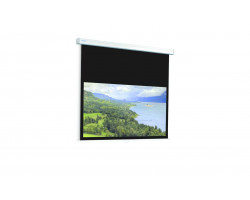 [10201058] Экран Projecta ProScreen 188х240 см (107