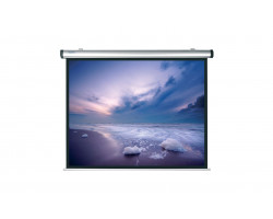 [10130729] Экран Projecta Dynamic Electrol 180х238 см Matte White
