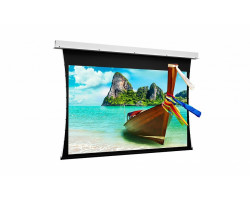 [10100970] Экран Projecta Tensioned Descender Electrol 173х300 см