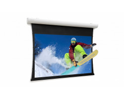 [10102782] Экран Projecta Tensioned Elpro Concept 167x380см
